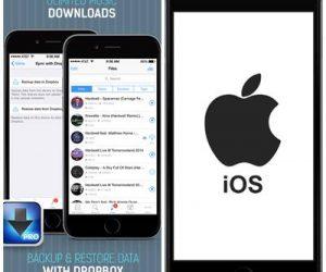 iDownloader, el 3 en 1 que todo usuario de iPad necesita para descargar archivos.